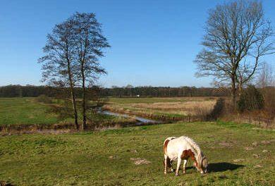 Drentse Aa rond Zeegse/ Schipborg (6,5km)