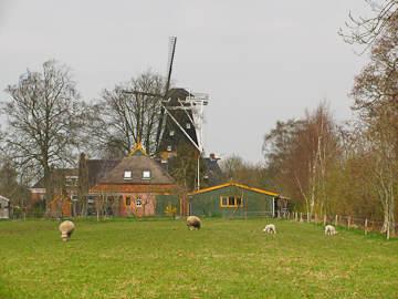 Wandelroute Westerkwartier deel 1 (39km)