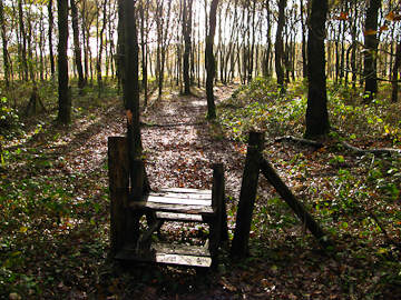 Trapje naar natuurgebied de Vijftig Bunder