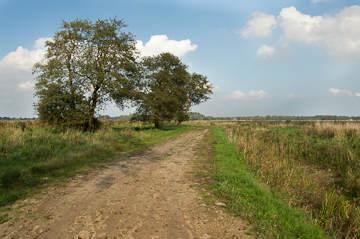 Stiltewandeling Westervelde (5,3km)