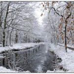 MensingebosRoden winter en sneeuw 1