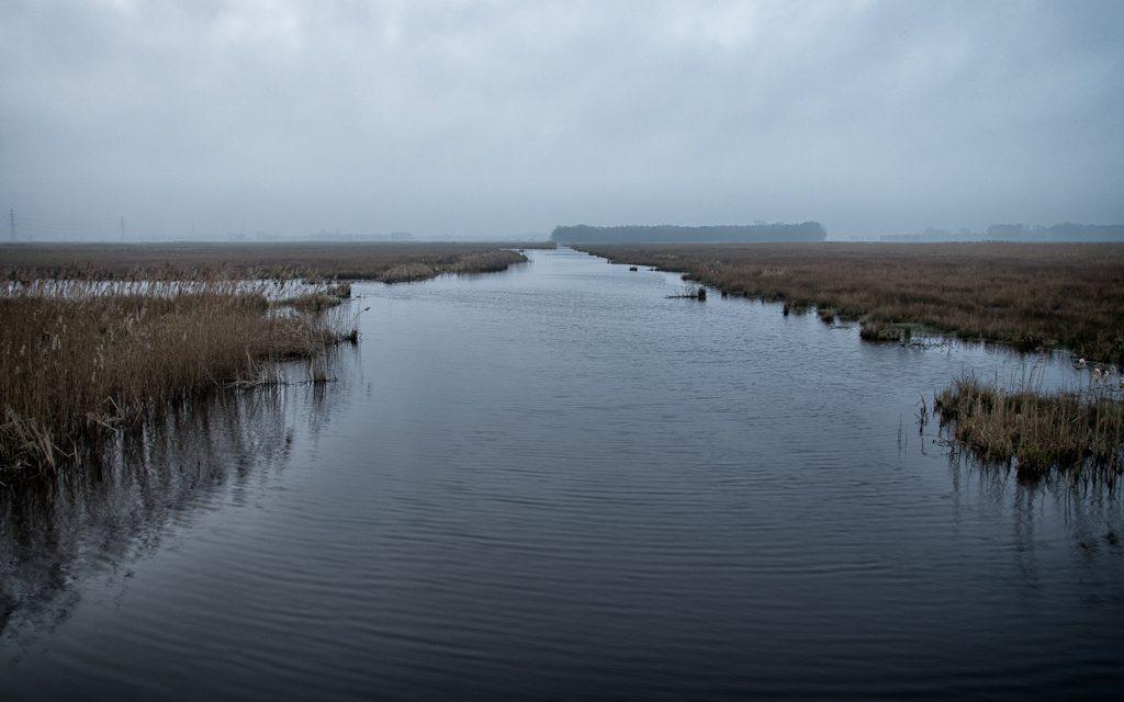 Rust en ruimte in de Onlanden bij Roderwolde (11km)